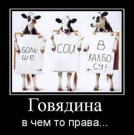 Диета Екатерины Миримановой Минус 60 подробное меню на