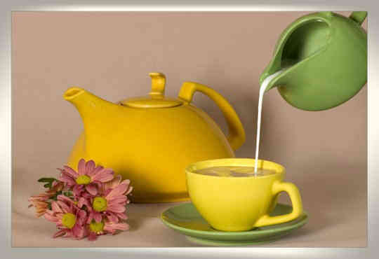 молочная диета с зеленым чаем -молокочай